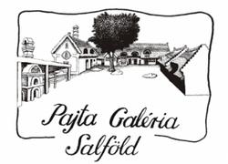 Pajta Galéria Salföld
