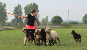 Tetőtől-talpig Kalenjiben, az új nyári pásztortrend :)